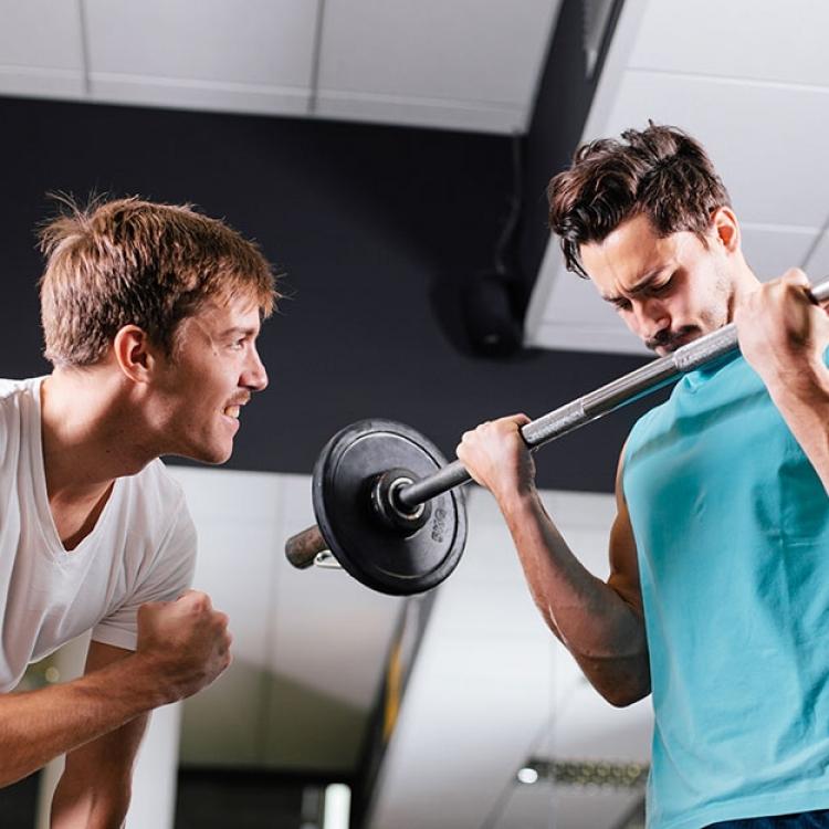 trainer guidance