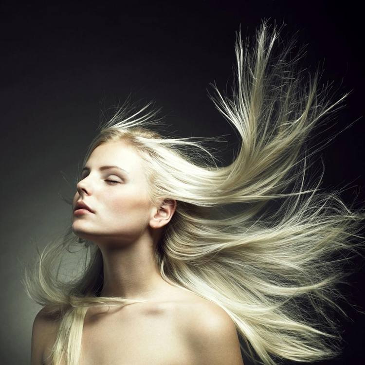 WOMAN AND THE WIND